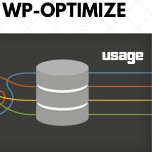 WP-Optimizeの設定方法・使い方を画像付きで初心者さん向けに解説!