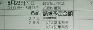 買い物日記 8/24 食費 449円 ガス代 1,602円