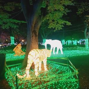 【フォトレポート】『光の祭典』人気イルミネーションの様子・アクセス方法