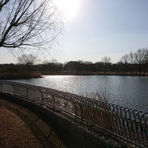 広すぎる公園「舎人公園(とねりこうえん)」現地レポート、ポケモンGO情報も!