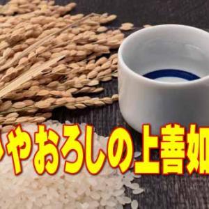 【日本酒情報】ひやおろしの上善如水 純米吟醸 白瀧酒造