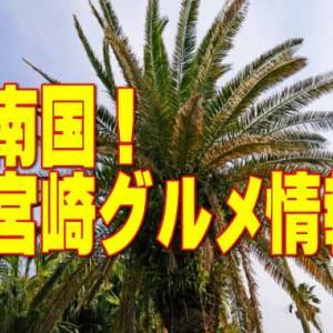【宮崎グルメ情報】南国九州の代表グルメは宮崎駅近辺に大集合!