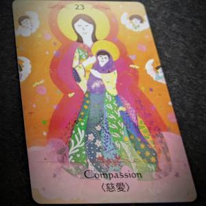 慈愛カードからのメッセージ