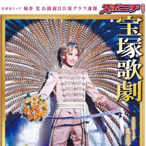 日本から送ってもらおうと思っている宝塚のものがいくつか出てきた