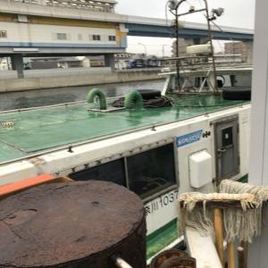 1月15日 野島沖防波堤 青灯・ハナレ