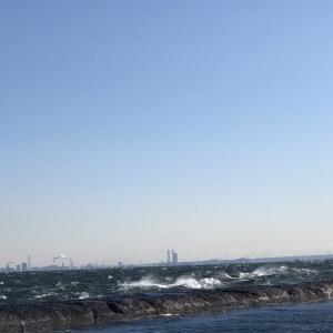 2月11日 野島沖防波堤 青灯・ハナレ