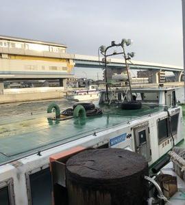 2月15日 野島沖防波堤 青灯・ハナレ