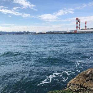 2月28日 野島沖防波堤 青灯・ハナレ