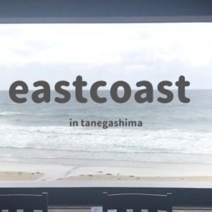 east coast(イーストコースト)|種子島で海を見ながらランチ