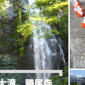 箕面大滝、勝尾寺ライド