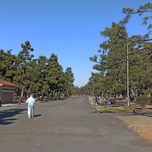 【大阪バーベキュースポット】浜寺公園でバーベキュー