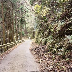 梅の木峠・冬至ライド
