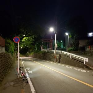 夏の宵・蛍探して・蛙聴く(夜ポタ)
