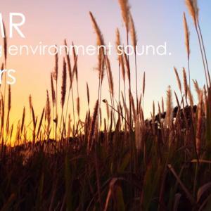 ASMR 睡眠 | 秋の夕暮れを見ながら風の音を聴く | 3時間 | environment sound