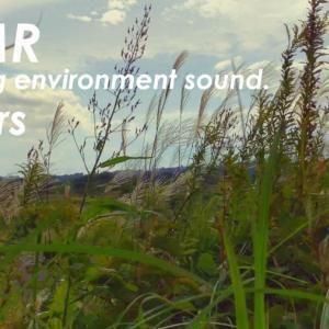 ASMR | 睡眠 | 風の音を堪能する動画 | 3時間 | environment sound