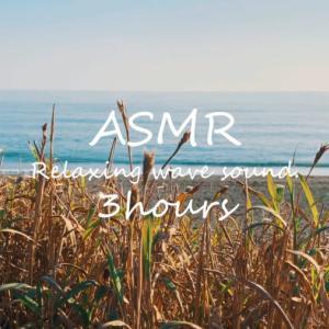 ASMR 睡眠 | 遠くで聞こえる優しい波の音で眠る | 3時間 | wave sound