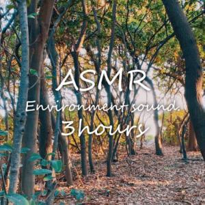 ASMR | 睡眠 | 静かに森の音を聴く | 3時間 | environment sound