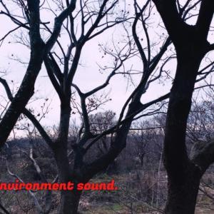 ASMR | 睡眠 | 特別なことが一切ない冬景色 | 3時間 | environment sound