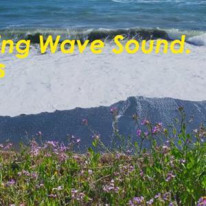 春風が吹く海の音 | 3時間 Wave sound |  ASMR |  睡眠