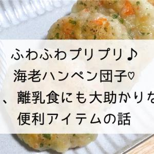 ふわふわプリプリ♪海老ハンペン団子♡と、離乳食にも大助かりな便利アイテムの話