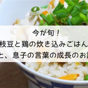 今が旬!枝豆と鶏の炊き込みごはん♡と、息子の言葉の成長のお話