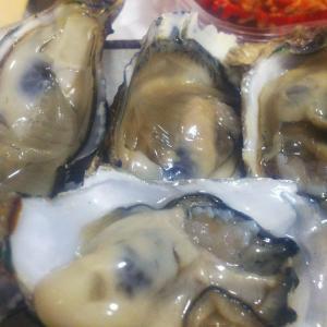楽天ふるさと納税で福岡県の生牡蠣がおすすめな理由と美味しくてリピート申込してるよって話