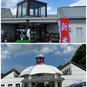 勝浦・遠見岬神社とばくだん丼