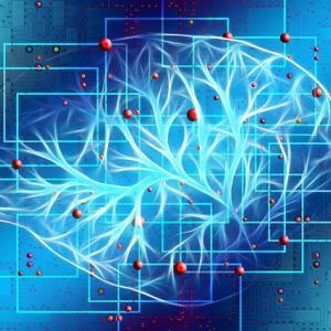 脳のフィルター機能「RAS(ラス)」で人は見たいものしか見ない!