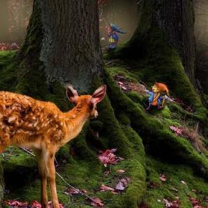 妖精って本当にいるの?日本のフェアリー神話を検証してみました!