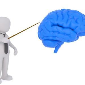 脳科学は面白い そもそも脳科学とは?男脳と女脳の違いは