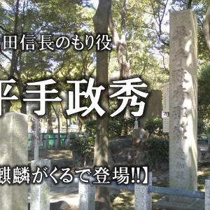 【平手政秀とは】人物像や経歴をわかりやすく解説!!性格や死因・お墓などについて