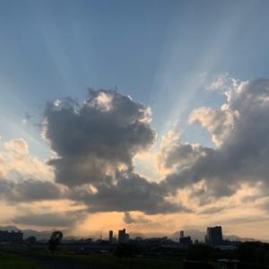 札幌に来て半年が過ぎました