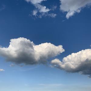 散歩しながら空の雲を見ることが多くなりました