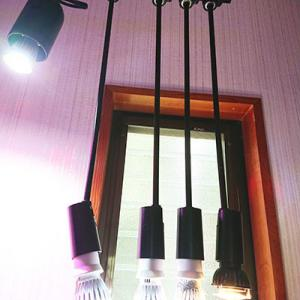 水槽の照明