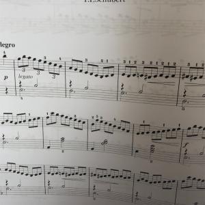次に取り組むクラシック曲