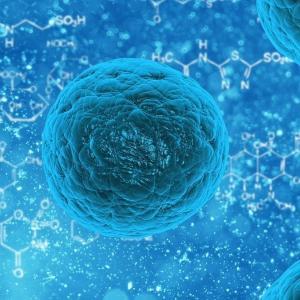 【SARS再び】新型のコロナウイルスに感染した人が神奈川に出たそうで。