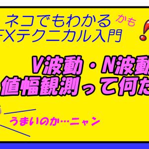 V波動、N波動って何だ?!