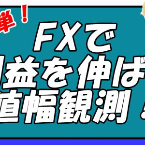 【超簡単】FXで利益を伸ばす値幅観測!