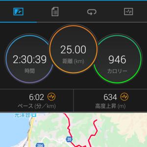 土日はLSD・テンポ走〜峠走 〜愛媛マラソンまで[あと20日]