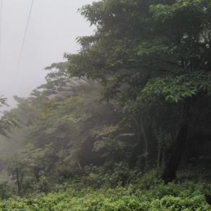 復活の山 〜高縄山で rTSS→hrTSSに修正