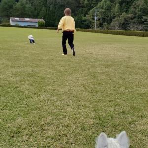 大州フラワーパークで遊ぶウエスティ。(本編)。