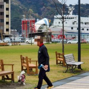 道の駅(みなっと)で散歩。