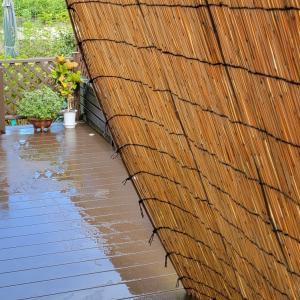 四国地方がやっと梅雨明け。