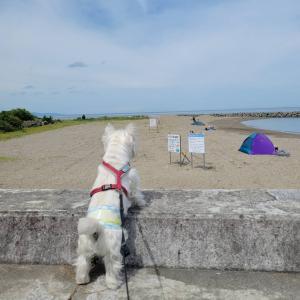 長浜海水浴場で散歩。