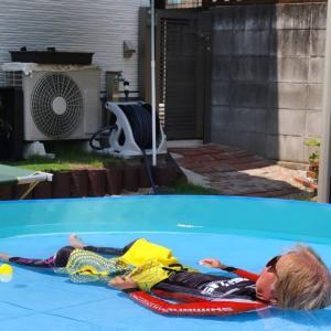 お庭でプール遊びとウエスティ。