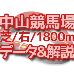 中山競馬場/芝/右/1800mのコース解説