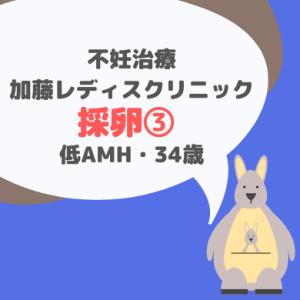 加藤レディスクリニック 採卵周期③_34歳・低AMH
