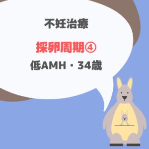 加藤レディスクリニック 採卵周期④_34歳・低AMH