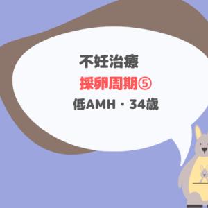 加藤レディスクリニック 採卵周期⑤_34歳・低AMH