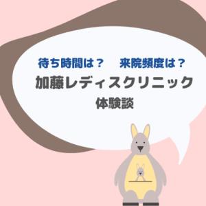 加藤レディスクリニック体験談(初診・採卵・移植・PGT-A)
